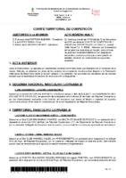 ACTA NÚM. 17 (19-20)